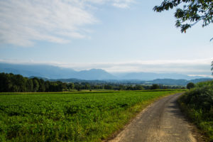 paysage pyrénées bordères